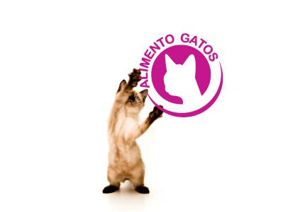 Comprar Alimento Concentado para gatos Catchips