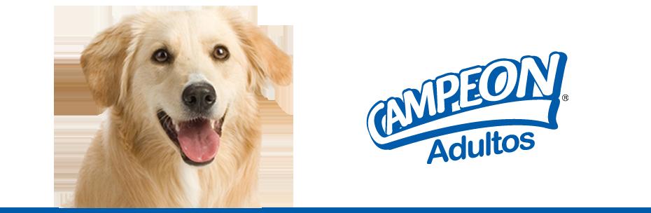 Comprar Alimento Concentado para perros Campeon Adultos