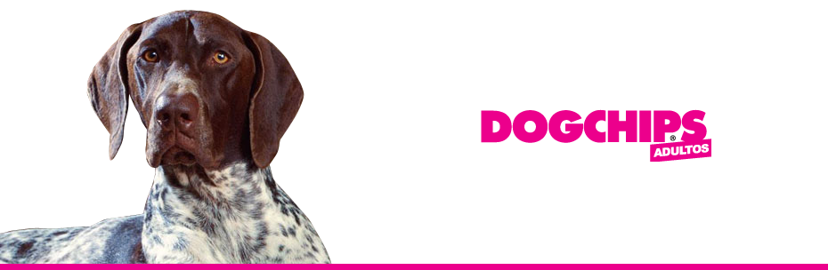 Comprar Alimento para Perros Dog Chips Adultos