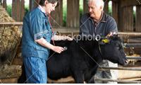 Comprar Nutrición Animal