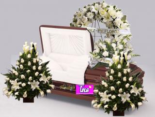 Comprar Condolencias » Medianoche