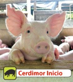 Comprar Alimento rico en proteínas Cerdimor Inicio®