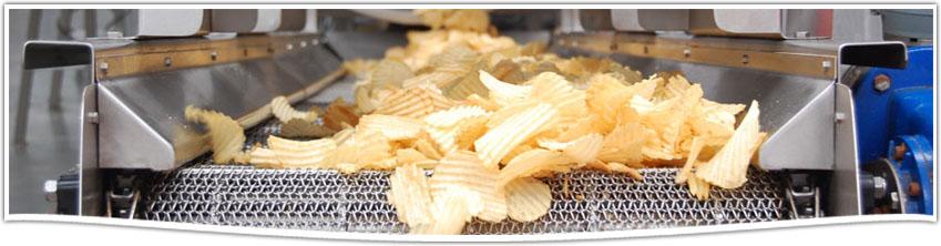 Comprar Condimentos y Sabores para la Industria de Snacks