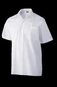 Comprar Camisas maga corta