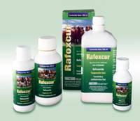 Comprar Antihelmíntico Rafoxcur ®