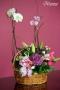 Canasta Orquídeas