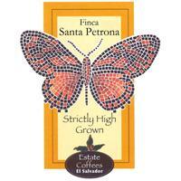 SHG Finca Santa Petrona Coffe