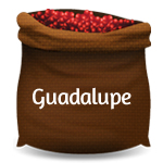 Coffee Guadalupe