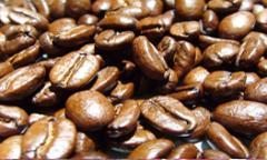 Café Premium Blends