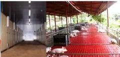 Equipos de produccion avícola