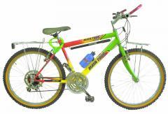 BIcicleta 007