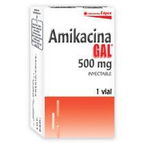 Amikacina GAL 500 mg Amikacina 500 mg / 2 ml