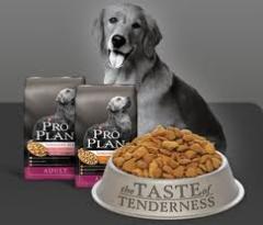 Alimento para perros Purina Proplan