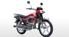 Motocicleta Turismo Reptile 150