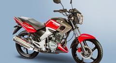 Motocicleta Street Venom 150