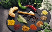 Especias Naturales, Aceites y Oleorresinas