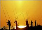 Accesorios de para pesca