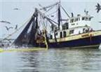 Implementos para la pesca industrial
