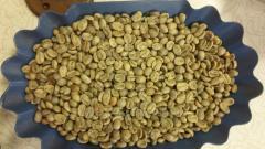 Кофе зеленый в зернах Арабика/Green coffee beans, species Arabica