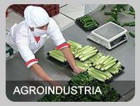 Productos quimicos para la industria de