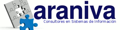 Araniva Consultores, Empresa, San Salvador