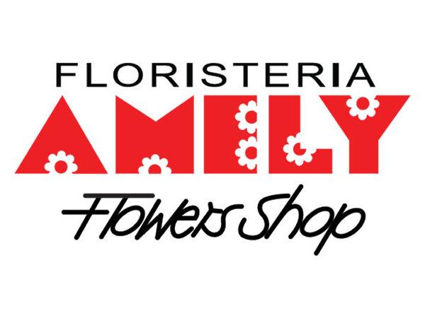 Amely Flowers Shop, Empresa, San Salvador