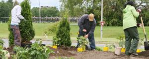 Pedido Servicios de diseño, confección y mantenimiento de jardines
